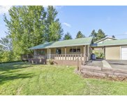 137 COLLINS  RD, Kelso image