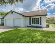 2844 Whitehall Drive, Palm Harbor image
