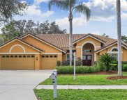 4813 Londonderry Drive, Tampa image