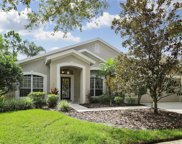 10207 Thicket Point Way, Tampa image