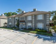 14053 Notreville Way, Tampa image