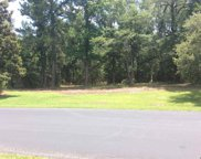 LOT 1 BRICKWELL LN, Pawleys Island image