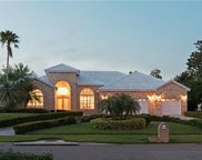 8433 Sand Lake Shores Court, Orlando image