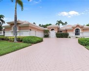 6631 Glen Arbor Way, Naples image