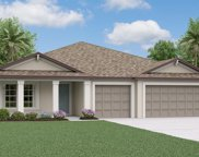 10834 Crushed Grape Drive, Riverview image