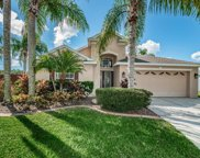 11306 Cypress Reserve Drive, Tampa image