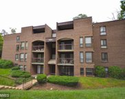 11232 CHESTNUT GROVE SQUARE Unit #335, Reston image
