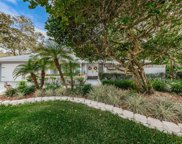 15901 Country Farm Place, Tampa image
