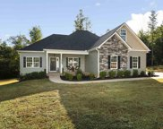 328 Puckett Mill Drive, Central image