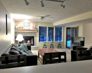 4749 S Pleasantview Road, #105 Unit #105, Harbor Springs image