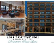 1611 Locust Unit #301, St Louis image