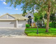 11142 Bridgecreek Drive, Riverview image