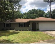 13804 Candidate Place, Tampa image