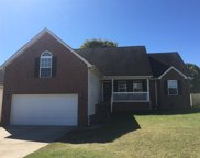 1305 Chapman Court, Spring Hill image