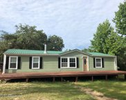 5415 PAINTED PONY AVE, Keystone Heights image