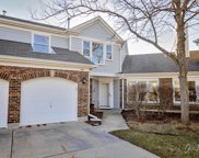 497 Banyan Tree Lane, Buffalo Grove image