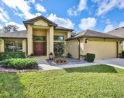 15620 Starling Water Drive, Lithia image