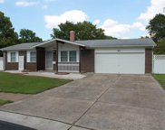 40 Willow Brook Ct, St Charles image
