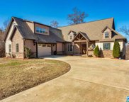 1060 Wolf Pen Ridge Rd, Pell City image