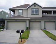 6042 Fishhawk Crossing Boulevard Unit 6042, Lithia image
