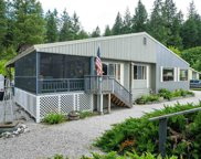 46481 Cedar Beau, Loon Lake image