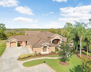 1116 Riverside Ridge Road, Tarpon Springs image