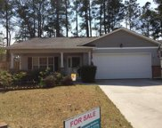 1131 Jordan Lake Court, Leland image