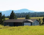 25609 Mountain Shadow Road, Custer image