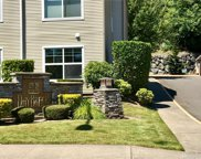 23420 SE Black Nugget Rd Unit D-301, Issaquah image