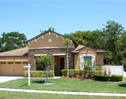 3573 Chandler Estates Drive, Apopka image
