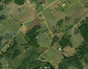 50+- Acres Marble Hill Rd, Friendsville image