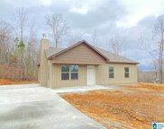 2495 Summit Park Rd, Odenville image