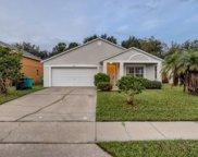 5118 Lobelia Drive, Orlando image