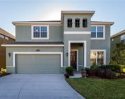 19330 Water Maple Drive, Tampa image