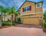 19436 Whispering Brook Drive, Tampa image