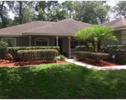 740 Haven Oak Court, Apopka image