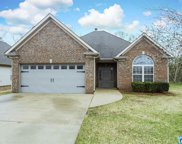 3096 Hidden Forest Cove, Montevallo image