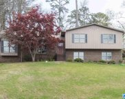 3628 Spring Valley Rd, Mountain Brook image