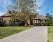 373 Shadow Creek Dr, Brentwood image