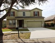 13507 Red Ear Court, Riverview image
