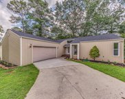 7340 Toxaway Drive, Knoxville image