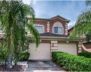18106 Nassau Point Drive, Tampa image