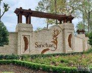 Sanctuary Ave, Baton Rouge image