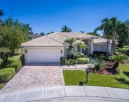 2530 Eagle Run Ct, Weston image