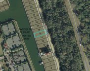 230 Harbor Village Pt, Palm Coast image
