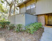 13 Lawton  Drive Unit 85, Hilton Head Island image