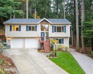 4 Appaloosa Ct, Bellingham image