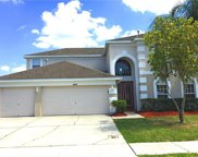 10333 Meadow Crossing Drive, Tampa image