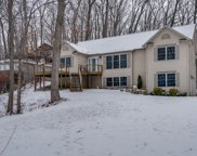 35624 Mill Lake Road, Gobles image