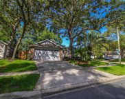 1002 Royal Oaks Drive, Apopka image